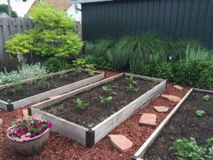 patio-herb-garden